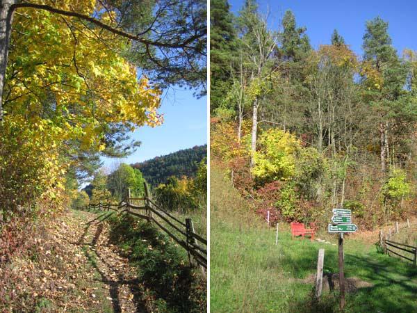 Nennsdorf - Herbst