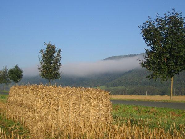 Herbstanfang 2010