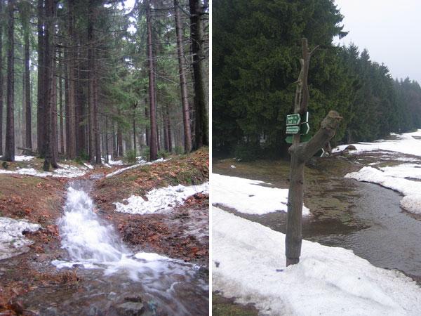 Rennsteig Schneeschmelze
