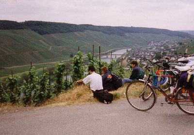 Mosel - Zell